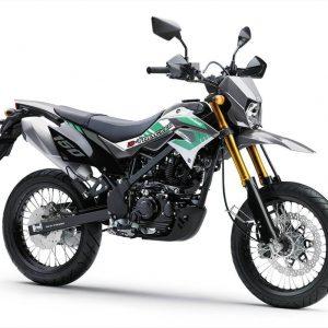 Kawasaki Dtracker